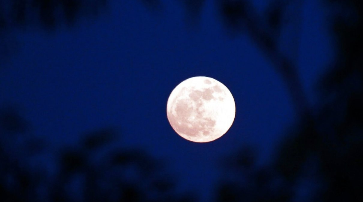 Supermoon wows sky-gazers for only time this year and the TRUTH about the Moon…