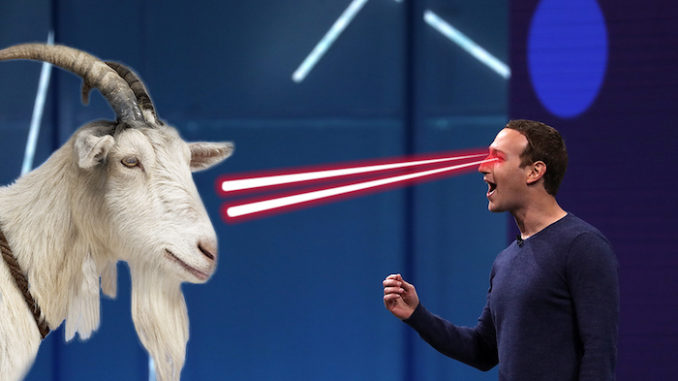 Jack Dorsey: Zuckerberg Served Me Raw Goat He Killed with a Laser