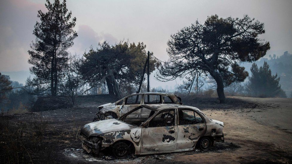 Greece wildfires leave blackened forests in their wake