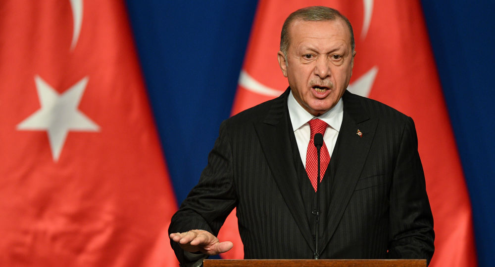 French President Should Check His Own 'Brain Death' – Erdogan on Macron's NATO Comment
