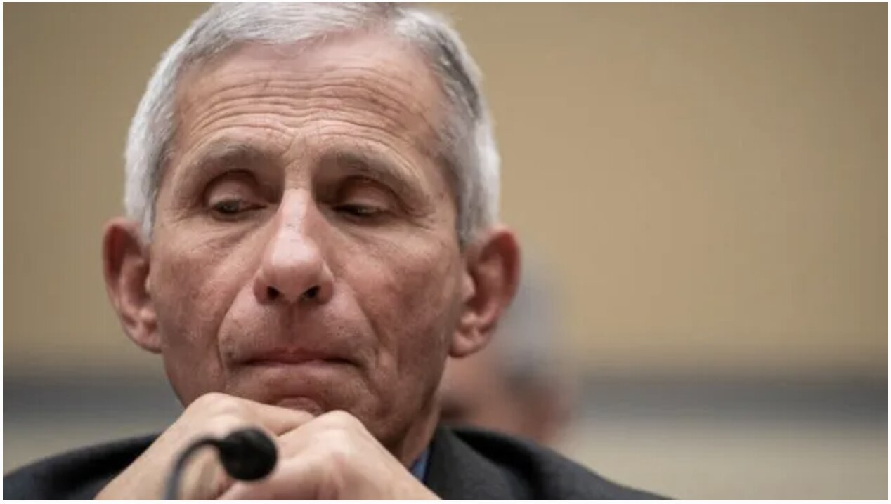 Dr. Fauci in 2017: Trump Will 'Definitely' Face 'Surprise' Infectious Disease Outbreak In 'Next Few Years'