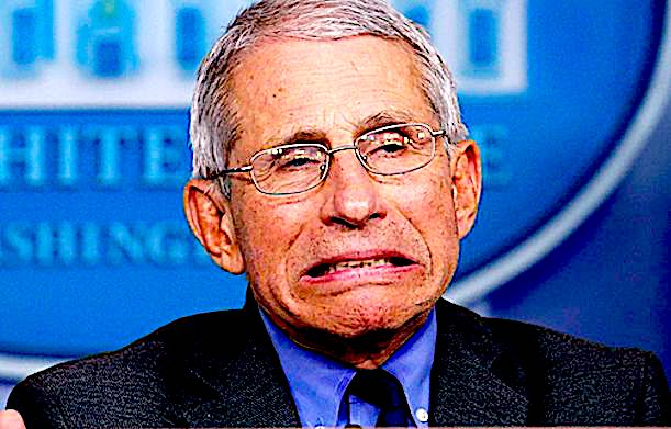 Anthony Fauci Admits Chances Of Getting Accurate Results From COVID PCR Tests Are 'Miniscule'