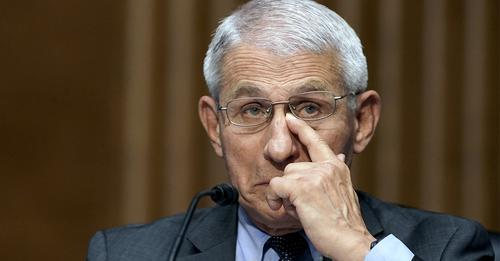 Dr. Fauci 'caught lying' to Congress after book exposes details of Wuhan lab-linked grant, lawmaker says